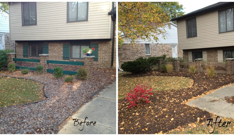 Power of Exterior Color